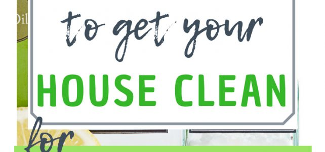 non toxic ingredients to clean your house