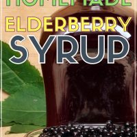 how to make organic elderberry syrup