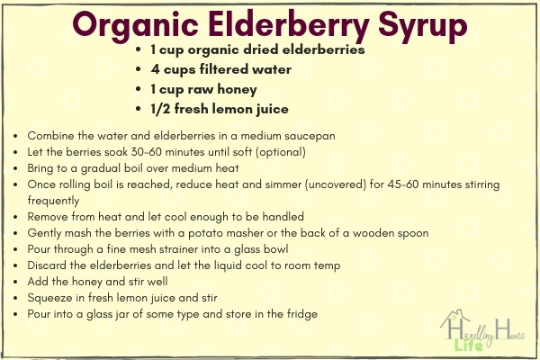 How to make elderbery syrup