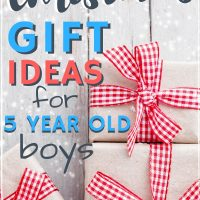 Are You Looking For Gifts 5 Year Old Boys As A Mom Of 4 I Am Quite Seasoned When It Comes To Picking Out The Best Toys Olds