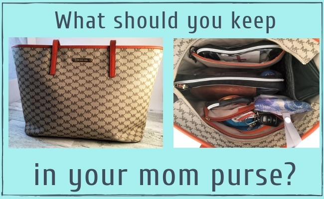 the perfect mom purse