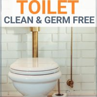 cleaning tips for the boy toilet