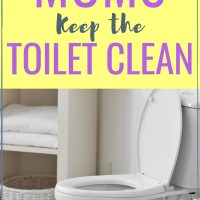 How smart moms keep the toilet clean and germ free