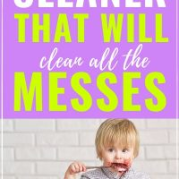 the best all purpose cleaner that is safe