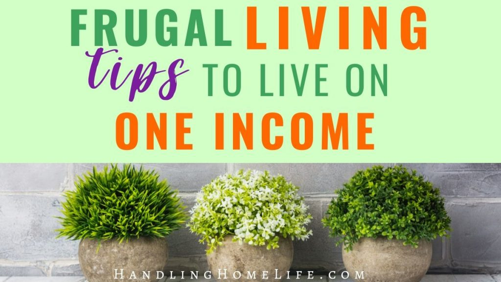 frugal living tips for single income family